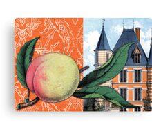 Peachy Keen Hard Journal Cover Canvas Print