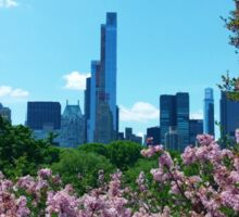 Central Park Springtime Sticker