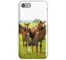 Herd of Love iPhone Case/Skin