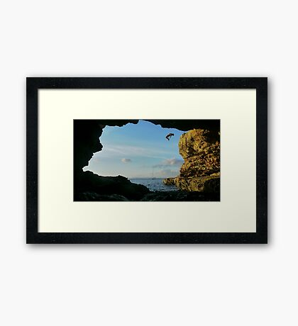 The art of flying Framed Print