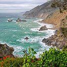 California Coast by TonyCrehan