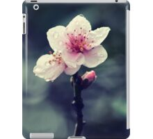Flower Plum Blossoms photography iPad Case/Skin