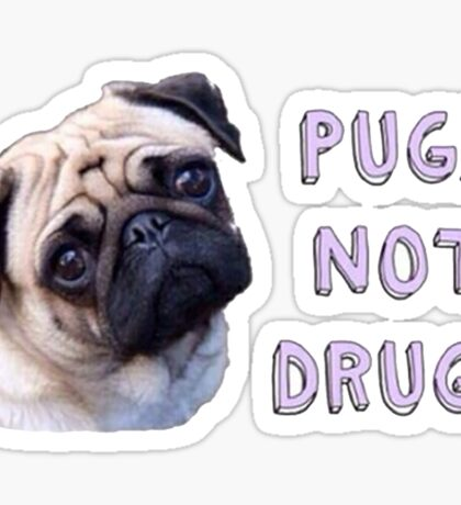 Pugs Not Drugs Sticker