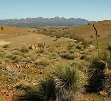 Joe Mortelliti Gallery - Huck's Lookout in the Flinders Ranges, South Australia.  by thisisaustralia
