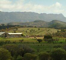 Joe Mortelliti Gallery - Arkaba Station woolshed, Flinders Ranges, South Australia by thisisaustralia