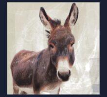 Wetnose Donkey Colour Kids Tee