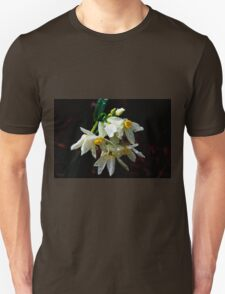 Weeping Narcissus T-Shirt