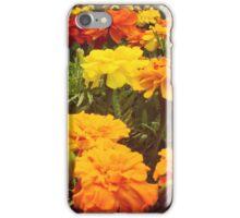 Marigold Cluster iPhone Case/Skin