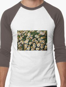 White flowers and yellow center, natural background. Men's Baseball ¾ T-Shirt