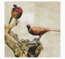 Wetnose Pheasant Colour Baby Tee