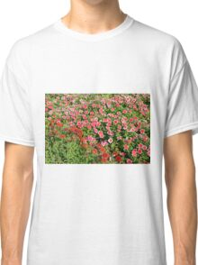 Field of beautiful red flowers. Classic T-Shirt