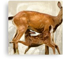 Wetnose Deer Colour Canvas Print