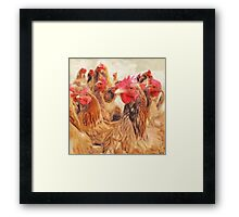Wetnose Chickens Colour Framed Print