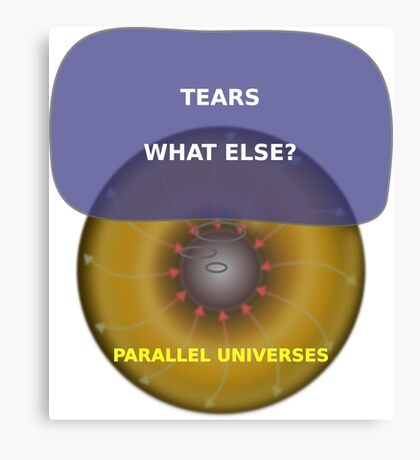 Parallel Universes - Sears Canvas Print