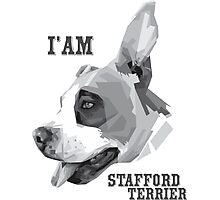America Stafford Terrier Photographic Print