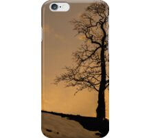 Alston - Lone Tree Sunset iPhone Case/Skin