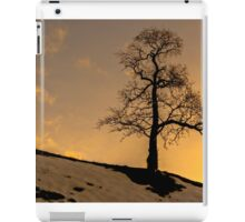 Alston - Lone Tree Sunset iPad Case/Skin