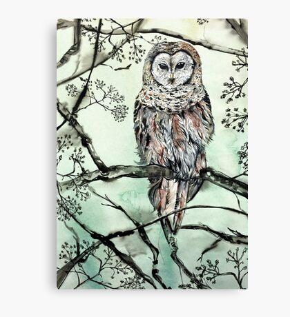 Woodland Owl Canvas Print
