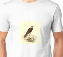 Historical bird painting Unisex T-Shirt