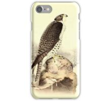 Historical bird painting iPhone Case/Skin