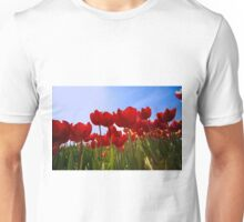 ...spring.. time to work with your wide angle lens...  Unisex T-Shirt