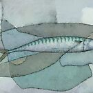 Cornish Mackerel by Stephen Mitchell
