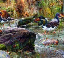 Avian Spring Sticker