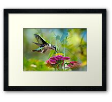 Sweet Success Hummingbird Framed Print