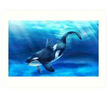 Original Animal Art - Orca Art Print