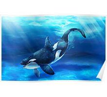 Original Animal Art - Orca Poster