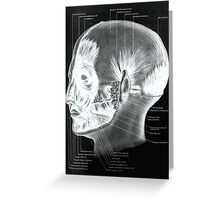 Historical surgical chart Greeting Card