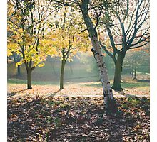 Autumnal Mist Photographic Print
