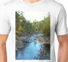 Black River Michigan Unisex T-Shirt