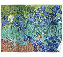 Vincent van Gogh - Irises Poster