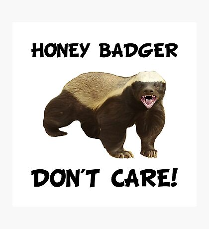 Honey Badger Don't Care Photographic Print
