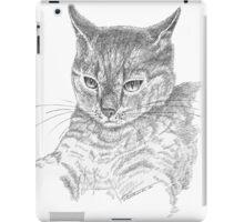 Wistful cat iPad Case/Skin
