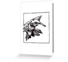 Graphic Hummingbird Greeting Card