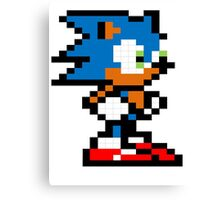 Sonic! Canvas Print