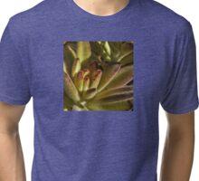 Chocolate Soldier Kalanchoe Tri-blend T-Shirt