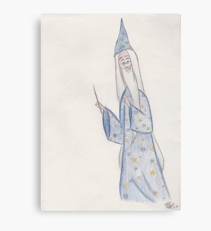 Wise Wizard Canvas Print
