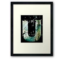 Uncharted 1 U Framed Print
