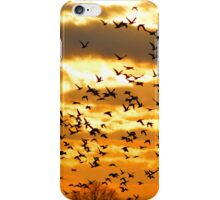 Ducks Unlimited iPhone Case/Skin