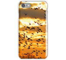 Ducks Unlimited iPhone Case/Skin