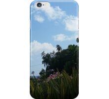 Hill in St. Croix iPhone Case/Skin