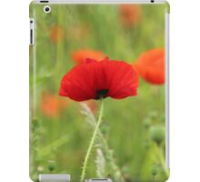 Poppies and Grass Seeds iPad Case/Skin