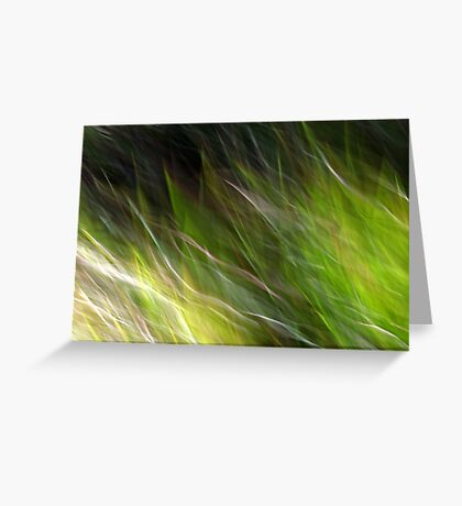 Watching the Wind Blow #2 Greeting Card