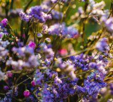 Lavender Blossom Sticker