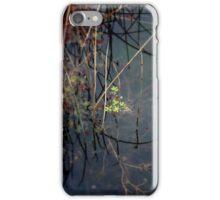Salisbury Waters iPhone Case/Skin