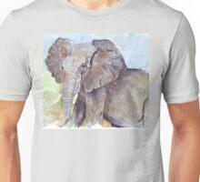 Africa's Wonder Unisex T-Shirt
