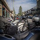 Bikes in Bellingen by Clare Colins